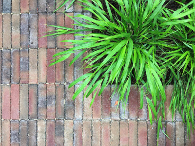 Bexhill Clay Pavers