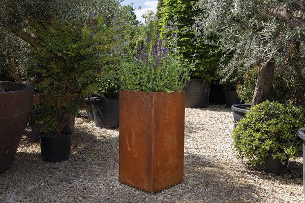 Image displaying Corten Steel Tall Cube Planter (W 500 x H 1000 x D 500mm). *Planting for illustrative purposes only.