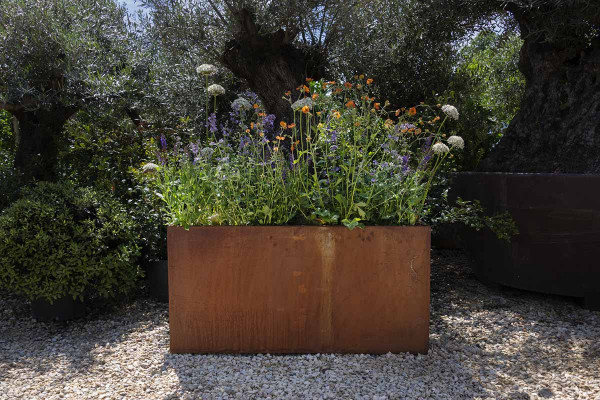 Image displaying Corten Steel Tall Trough Planter (W 1200 x H 600 x D 300mm). *Planting for illustrative purposes only.