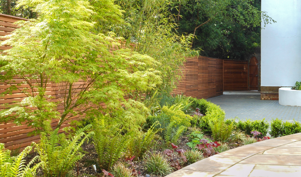Red Cedar fencing will make the perfect backdrop to lush planting.