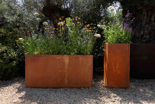 Corten steel planters in situ with perennial plants in bloom from Form Plants.