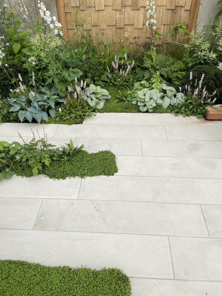 Plank paving is the perfect complement to the planting in this design.
