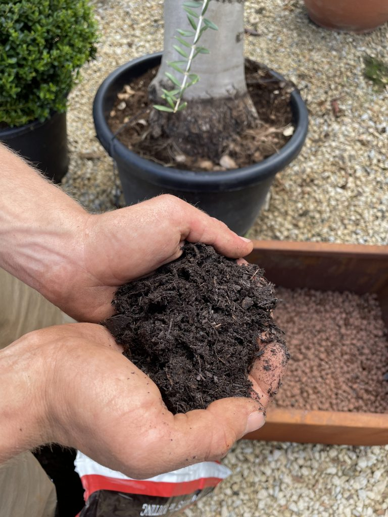 Peat-free compost is perfect for planting.