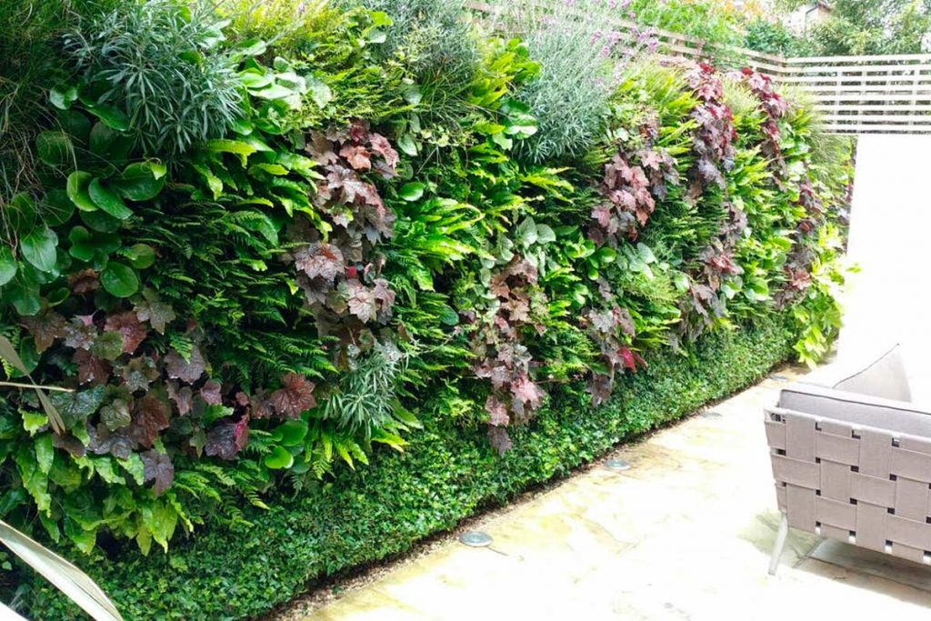 Living Wall Systems For Your Garden