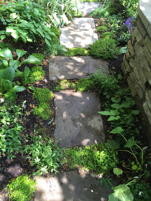 Calibrated Reclaimed Yorkstone, London Stone, Designer Anne Jennings, Viridian Landscape Design, Mind Your Own Business