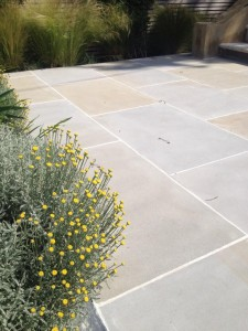 Forest Sawn Sandstone, UK, with flowers from London Stone